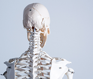頸椎捻挫・頸椎損傷イメージ